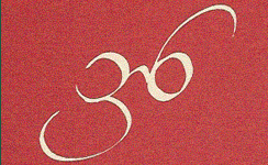36 Opticians Logo