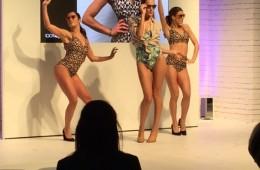 100% Optical Fashion Show