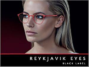 Reykjavik Eyes